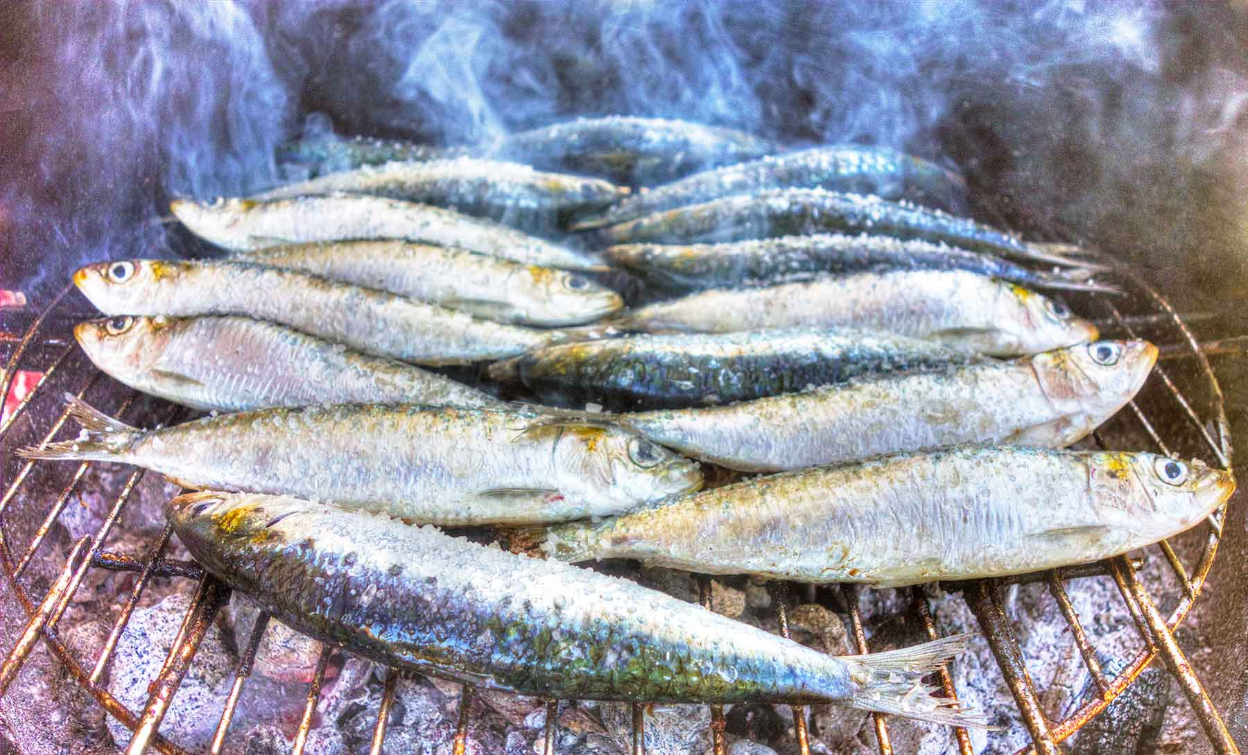 Sardines - Portugal